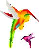 Colibri_Birds_clip_art_small